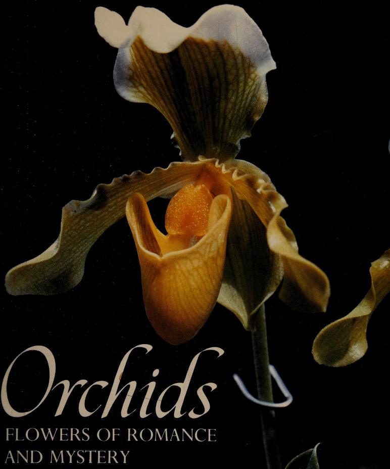 Orchids by Kramer, Jack